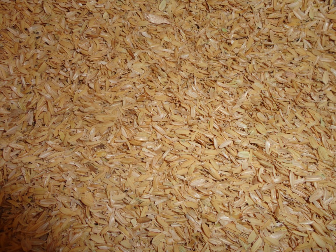 browns sawdust and shaving supplies